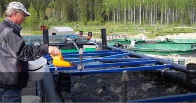 Piscicultura en contenedores marítimos: una respuesta a los desafíos de la acuicultura